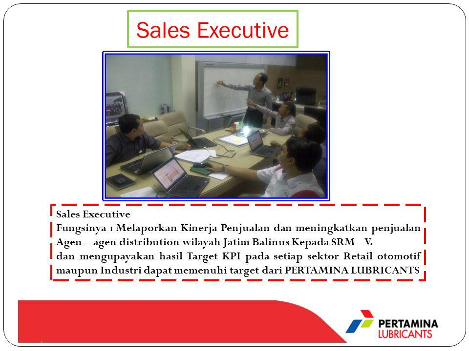 Sales Executive Fungsinya : Melaporkan Kinerja Penjualan dan meningkatkan penjualan Agen – agen distribution wilayah Jatim Balinus Kepada SRM – V. dan