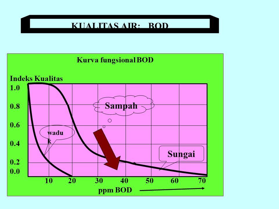 KISARAN DO DALAM AIR NORMAL: 7.1 - 14.6 ppm Kurva fungsional DO Indeks Kualitas 1.0 0.8 0.6 0.4 0.2 0.0 2 4 6 8 ppm DO 9 ppm : jenuh Sampah