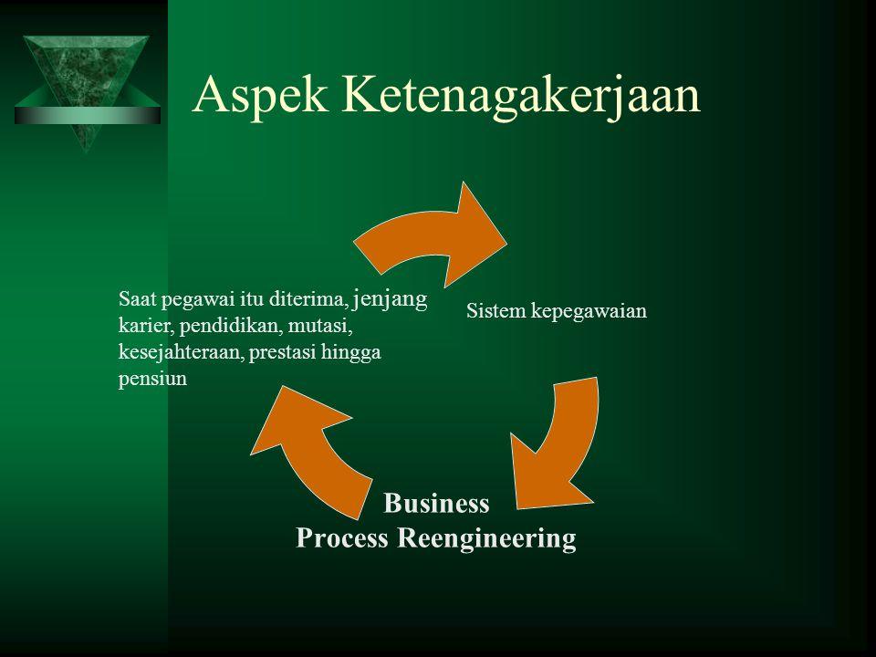 Aspek Ketenagakerjaan Sistem kepegawaian Business Process Reengineering Saat pegawai itu diterima, jenjang karier, pendidikan, mutasi, kesejahteraan, prestasi hingga pensiun