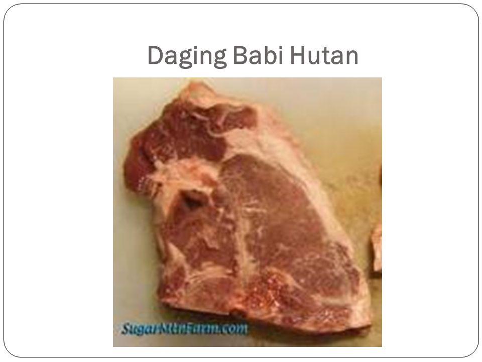 Daging Babi Hutan