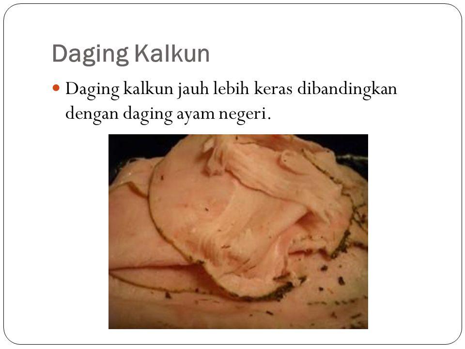 Daging Kalkun Daging kalkun jauh lebih keras dibandingkan dengan daging ayam negeri.