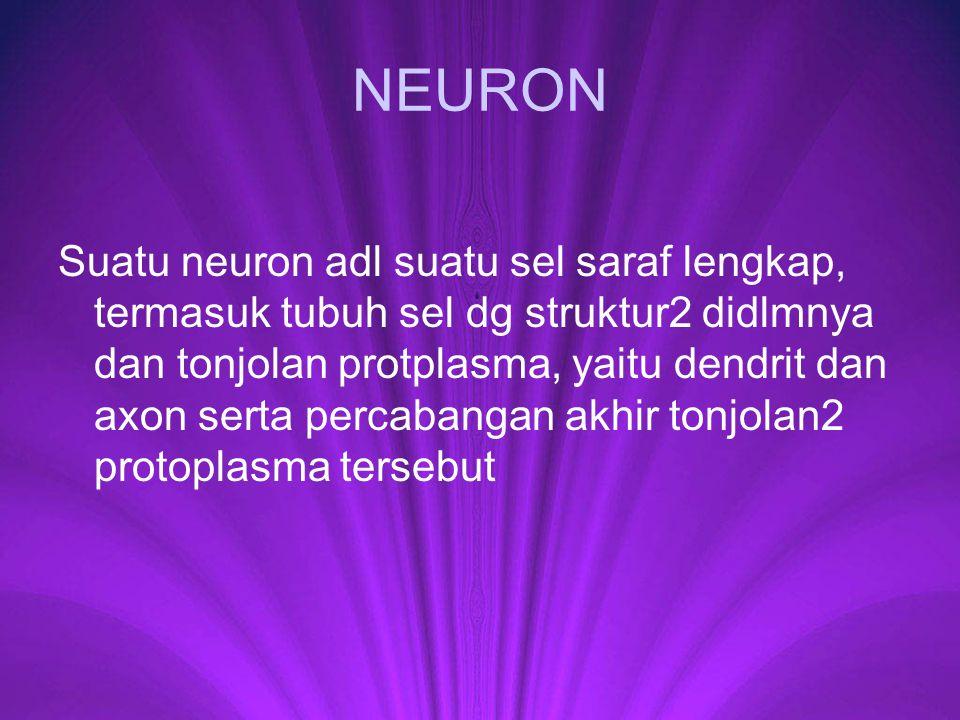 NEURON Suatu neuron adl suatu sel saraf lengkap, termasuk tubuh sel dg struktur2 didlmnya dan tonjolan protplasma, yaitu dendrit dan axon serta percab