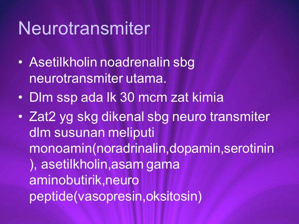 Neurotransmiter Asetilkholin noadrenalin sbg neurotransmiter utama. Dlm ssp ada lk 30 mcm zat kimia Zat2 yg skg dikenal sbg neuro transmiter dlm susun