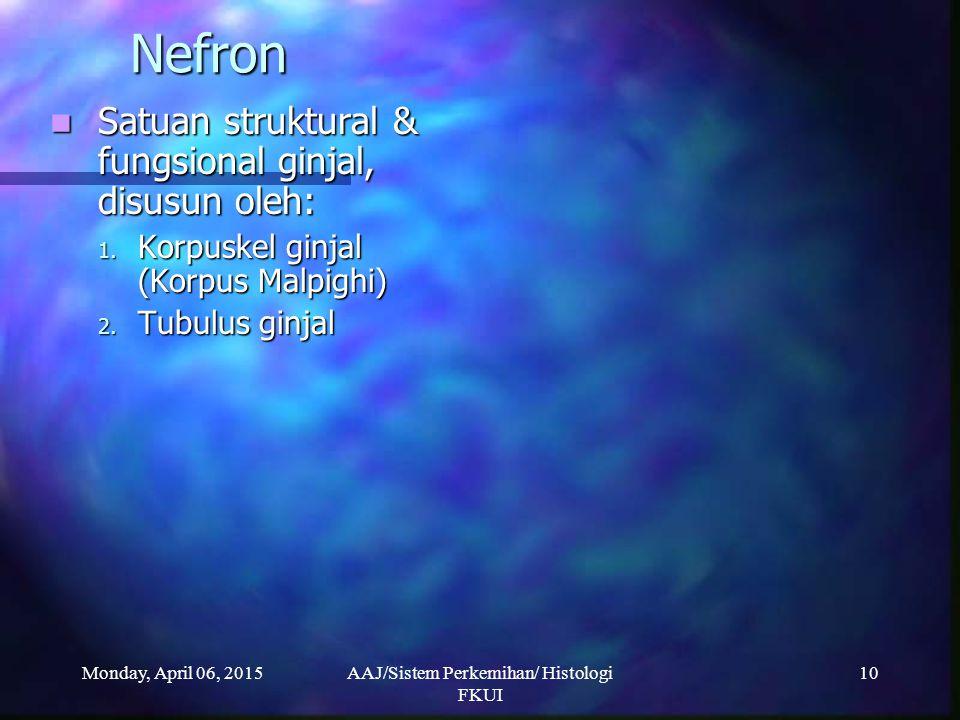 Monday, April 06, 2015AAJ/Sistem Perkemihan/ Histologi FKUI 10 Nefron Satuan struktural & fungsional ginjal, disusun oleh: Satuan struktural & fungsio