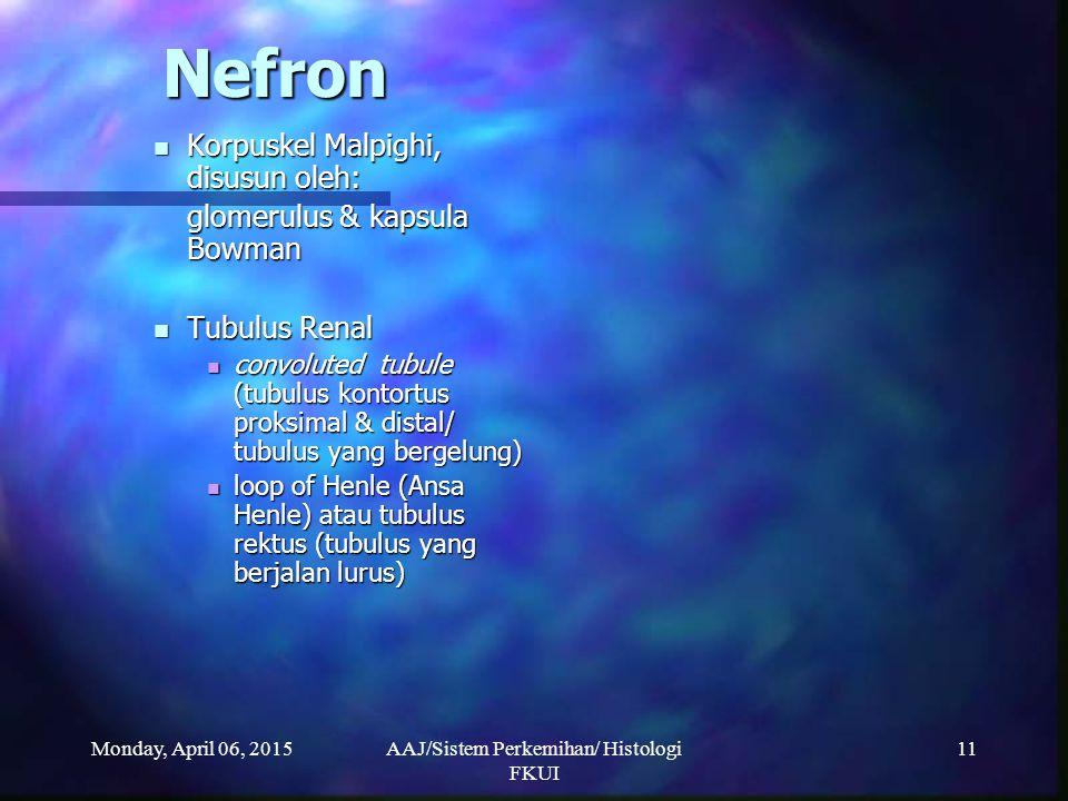 Monday, April 06, 2015AAJ/Sistem Perkemihan/ Histologi FKUI 11 Nefron Korpuskel Malpighi, disusun oleh: Korpuskel Malpighi, disusun oleh: glomerulus &