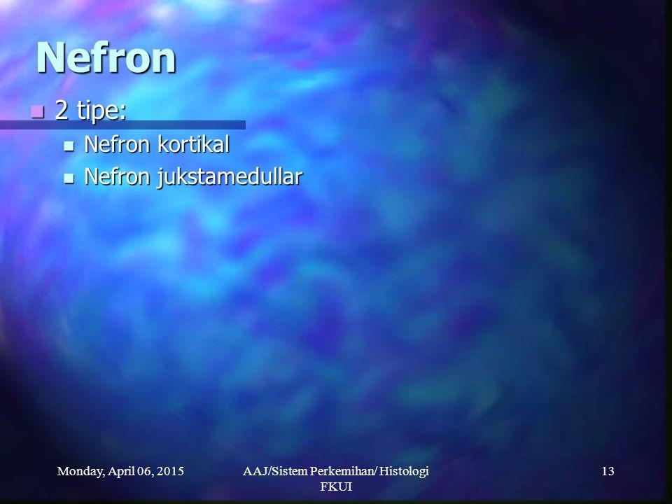 Monday, April 06, 2015AAJ/Sistem Perkemihan/ Histologi FKUI 13 Nefron 2 tipe: 2 tipe: Nefron kortikal Nefron kortikal Nefron jukstamedullar Nefron juk