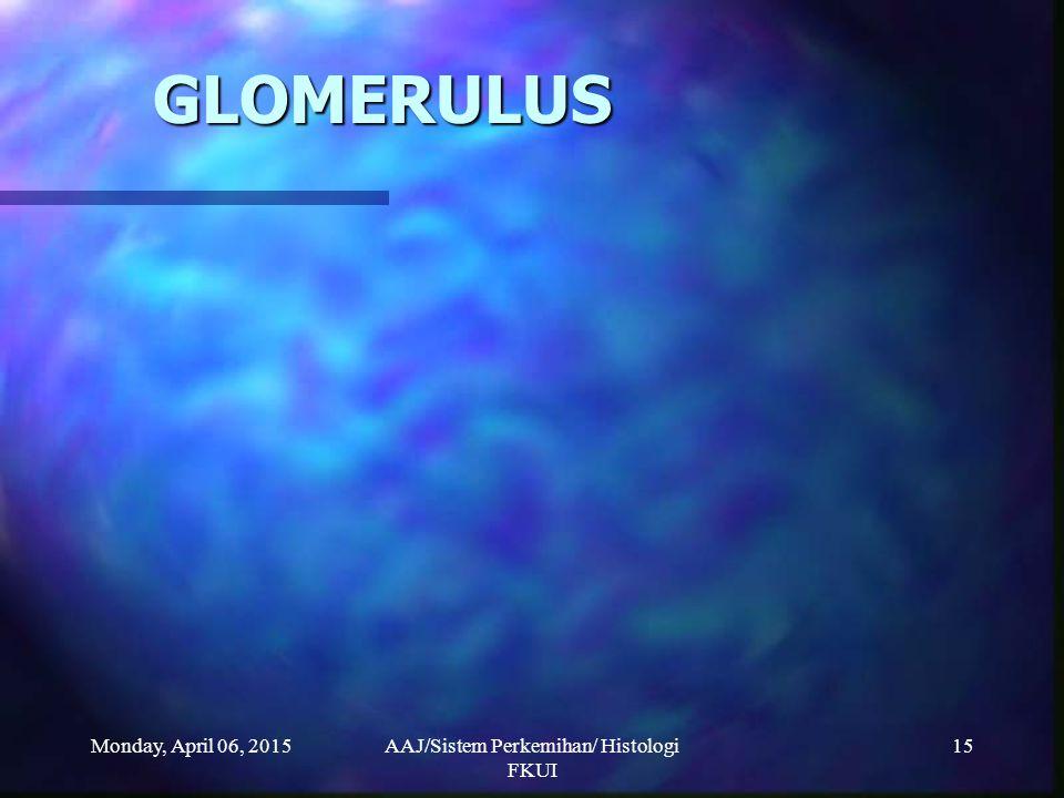 Monday, April 06, 2015AAJ/Sistem Perkemihan/ Histologi FKUI 15 GLOMERULUS