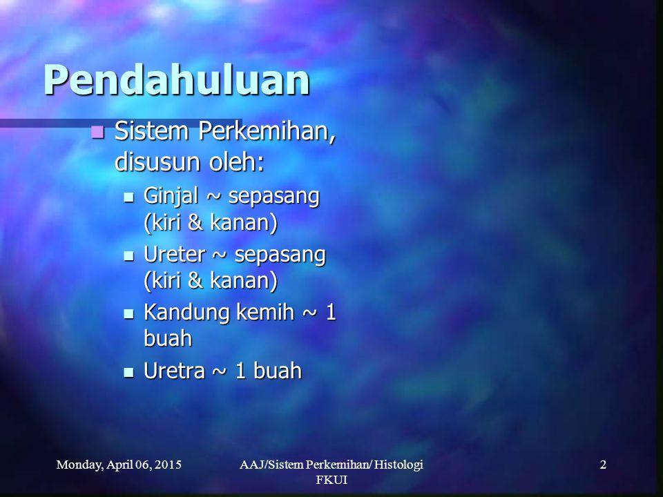 Monday, April 06, 2015AAJ/Sistem Perkemihan/ Histologi FKUI 23 Kapsula Bowman