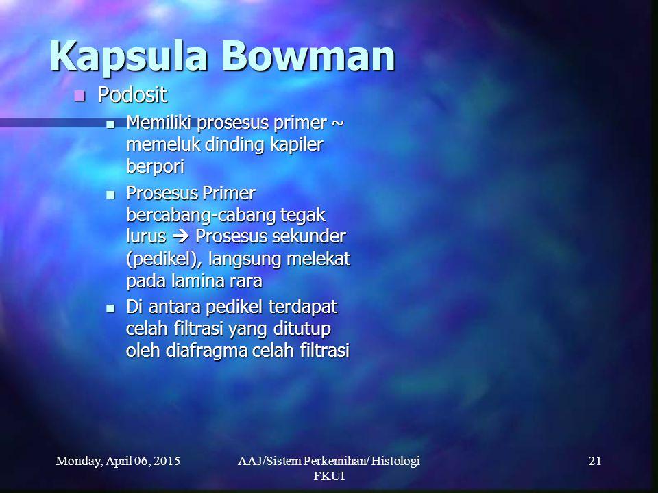 Monday, April 06, 2015AAJ/Sistem Perkemihan/ Histologi FKUI 21 Kapsula Bowman Kapsula Bowman Podosit Podosit Memiliki prosesus primer ~ memeluk dindin