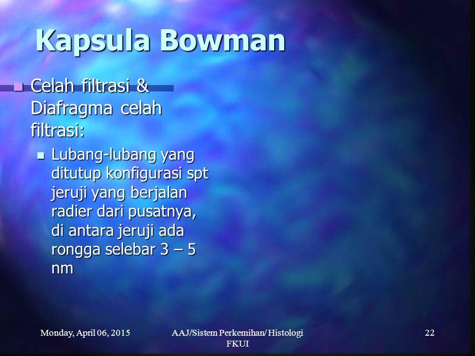 Monday, April 06, 2015AAJ/Sistem Perkemihan/ Histologi FKUI 22 Kapsula Bowman Kapsula Bowman Celah filtrasi & Diafragma celah filtrasi: Celah filtrasi