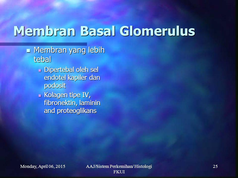 Monday, April 06, 2015AAJ/Sistem Perkemihan/ Histologi FKUI 25 Membran Basal Glomerulus Membran yang lebih tebal Membran yang lebih tebal Dipertebal o