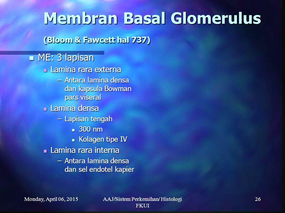 Monday, April 06, 2015AAJ/Sistem Perkemihan/ Histologi FKUI 26 Membran Basal Glomerulus (Bloom & Fawcett hal 737) ME: 3 lapisan ME: 3 lapisan Lamina r