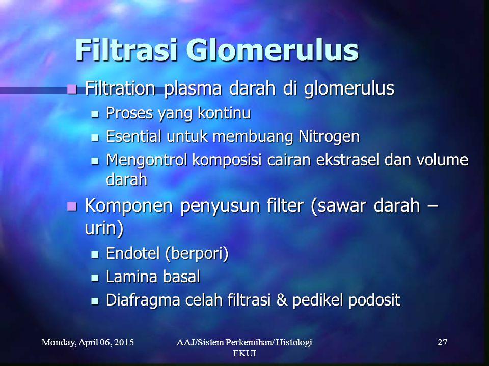 Monday, April 06, 2015AAJ/Sistem Perkemihan/ Histologi FKUI 27 Filtrasi Glomerulus Filtration plasma darah di glomerulus Filtration plasma darah di gl