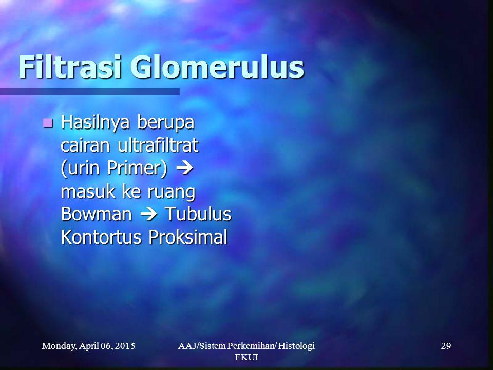Monday, April 06, 2015AAJ/Sistem Perkemihan/ Histologi FKUI 29 Filtrasi Glomerulus Hasilnya berupa cairan ultrafiltrat (urin Primer)  masuk ke ruang