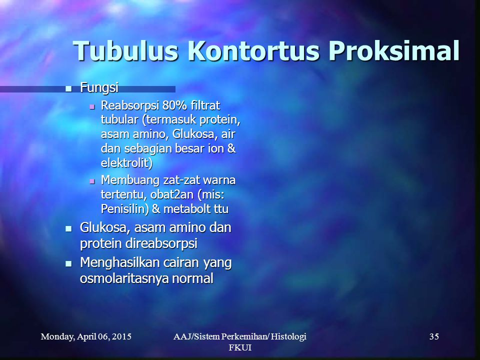 Monday, April 06, 2015AAJ/Sistem Perkemihan/ Histologi FKUI 35 Tubulus Kontortus Proksimal Fungsi Fungsi Reabsorpsi 80% filtrat tubular (termasuk prot