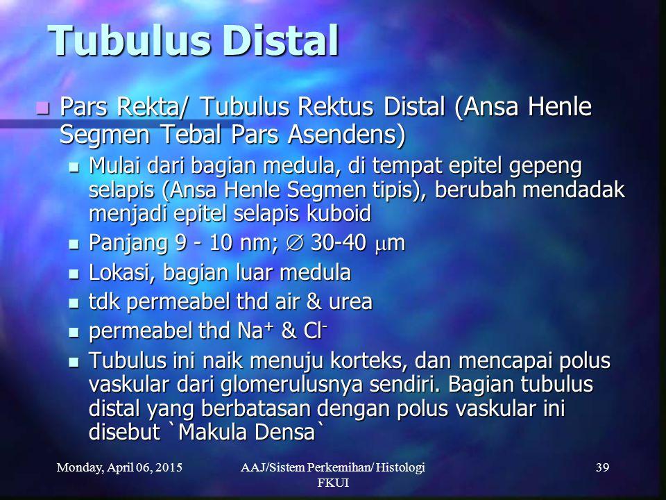 Monday, April 06, 2015AAJ/Sistem Perkemihan/ Histologi FKUI 39 Tubulus Distal Pars Rekta/ Tubulus Rektus Distal (Ansa Henle Segmen Tebal Pars Asendens