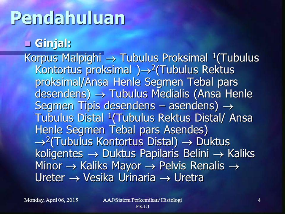 Monday, April 06, 2015AAJ/Sistem Perkemihan/ Histologi FKUI 4 Pendahuluan Ginjal: Ginjal: Korpus Malpighi  Tubulus Proksimal 1 (Tubulus Kontortus pro