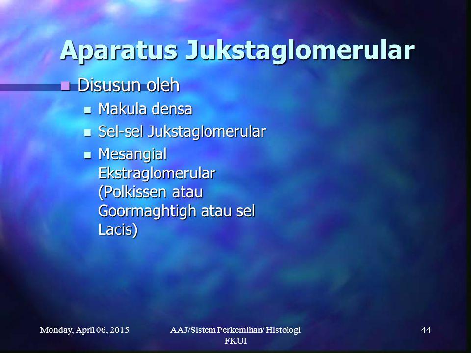 Monday, April 06, 2015AAJ/Sistem Perkemihan/ Histologi FKUI 44 Aparatus Jukstaglomerular Disusun oleh Disusun oleh Makula densa Makula densa Sel-sel J