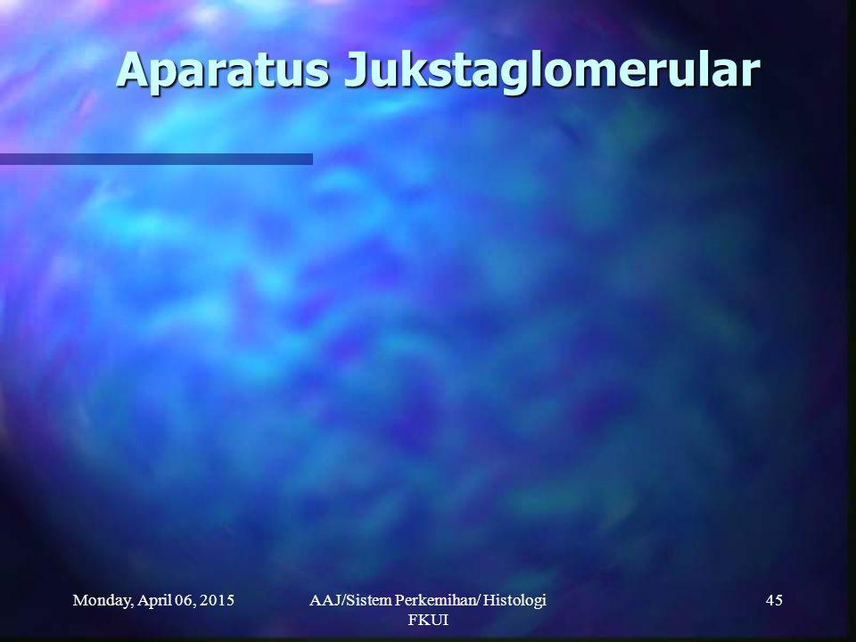 Monday, April 06, 2015AAJ/Sistem Perkemihan/ Histologi FKUI 45 Aparatus Jukstaglomerular