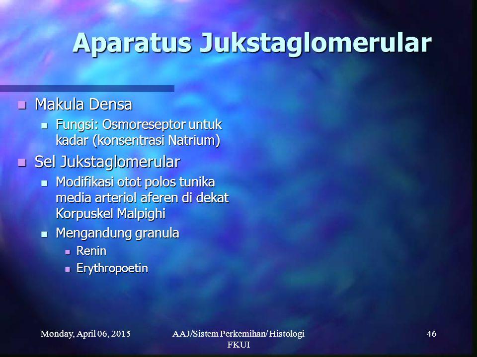 Monday, April 06, 2015AAJ/Sistem Perkemihan/ Histologi FKUI 46 Aparatus Jukstaglomerular Makula Densa Makula Densa Fungsi: Osmoreseptor untuk kadar (k