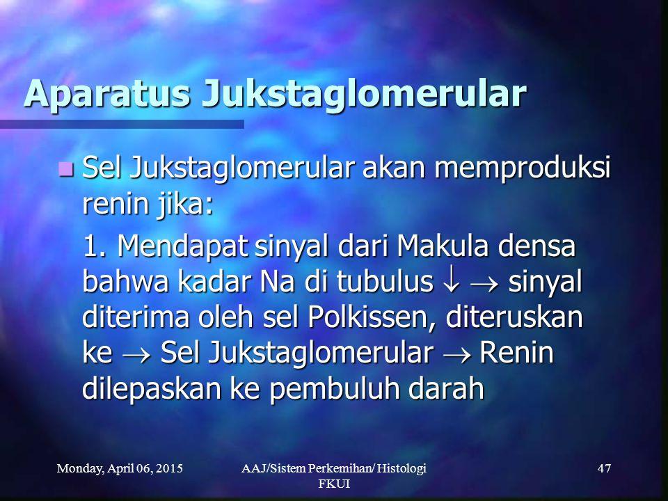 Monday, April 06, 2015AAJ/Sistem Perkemihan/ Histologi FKUI 47 Aparatus Jukstaglomerular Sel Jukstaglomerular akan memproduksi renin jika: Sel Jukstag