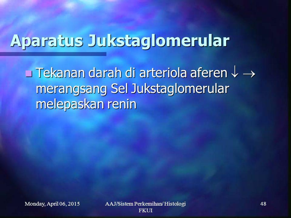 Monday, April 06, 2015AAJ/Sistem Perkemihan/ Histologi FKUI 48 Aparatus Jukstaglomerular Tekanan darah di arteriola aferen   merangsang Sel Jukstagl