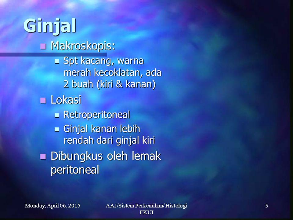 Monday, April 06, 2015AAJ/Sistem Perkemihan/ Histologi FKUI 76 Uretra Pars prostatika Pars prostatika Panjang 3-4 cm Panjang 3-4 cm Seluruhnya berada dalam prostat Seluruhnya berada dalam prostat Dilapisi Epitel: Dilapisi Epitel: Epitel Transisional (proksimal duktus ejakulatorius) Epitel Transisional (proksimal duktus ejakulatorius) Epitel Bertingkat silindris --- Epitel silindris berlapis (distal duktus ejakulatorius) & mengandung sel Goblet (menghasilkan mukus) Epitel Bertingkat silindris --- Epitel silindris berlapis (distal duktus ejakulatorius) & mengandung sel Goblet (menghasilkan mukus) Dengan ME: dapat terlihat ada sel yang memiliki mikrovili pendek Dengan ME: dapat terlihat ada sel yang memiliki mikrovili pendek
