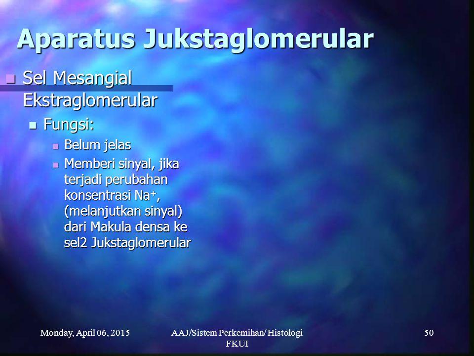 Monday, April 06, 2015AAJ/Sistem Perkemihan/ Histologi FKUI 50 Aparatus Jukstaglomerular Sel Mesangial Ekstraglomerular Sel Mesangial Ekstraglomerular