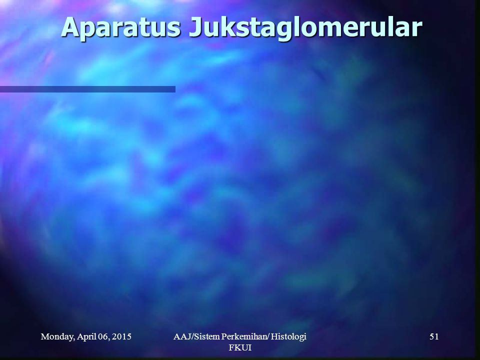 Monday, April 06, 2015AAJ/Sistem Perkemihan/ Histologi FKUI 51 Aparatus Jukstaglomerular