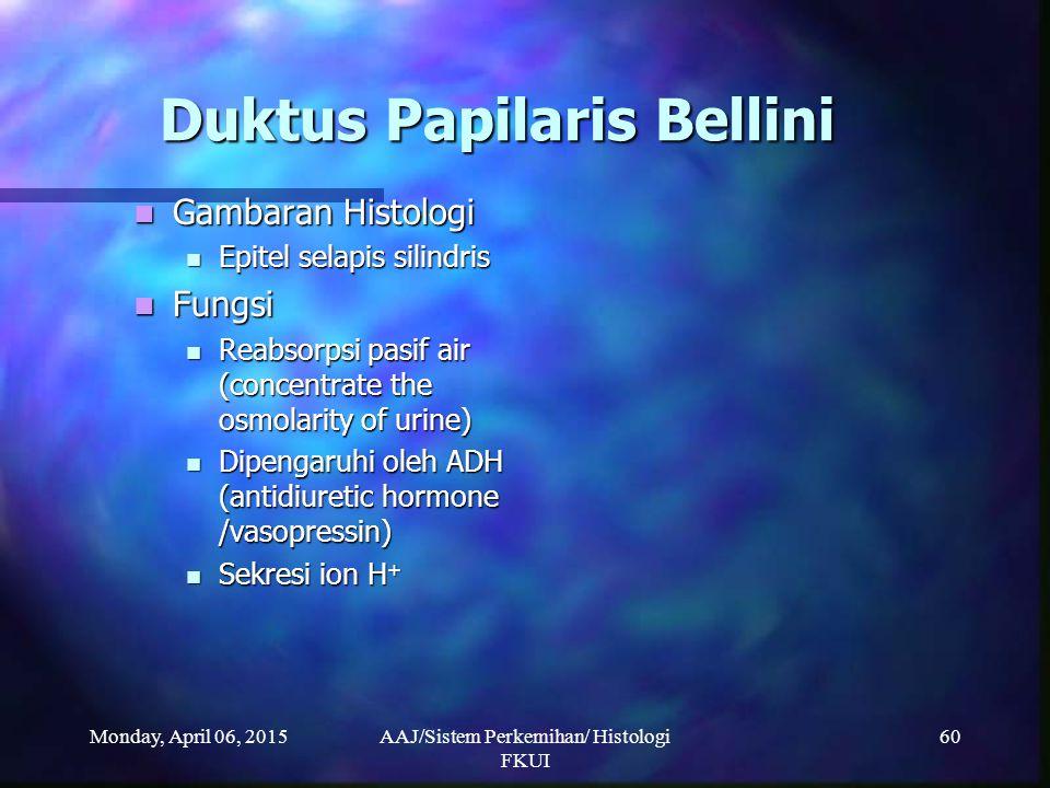 Monday, April 06, 2015AAJ/Sistem Perkemihan/ Histologi FKUI 60 Duktus Papilaris Bellini Gambaran Histologi Gambaran Histologi Epitel selapis silindris