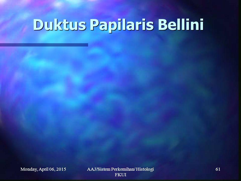 Monday, April 06, 2015AAJ/Sistem Perkemihan/ Histologi FKUI 61 Duktus Papilaris Bellini