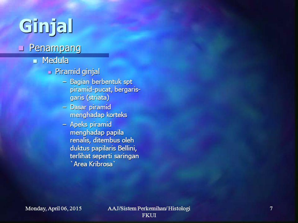 Monday, April 06, 2015AAJ/Sistem Perkemihan/ Histologi FKUI 7 Ginjal Penampang Penampang Medula Medula Piramid ginjal Piramid ginjal –Bagian berbentuk