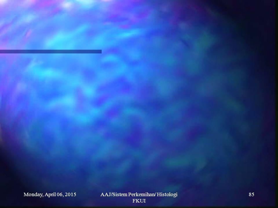 Monday, April 06, 2015AAJ/Sistem Perkemihan/ Histologi FKUI 85