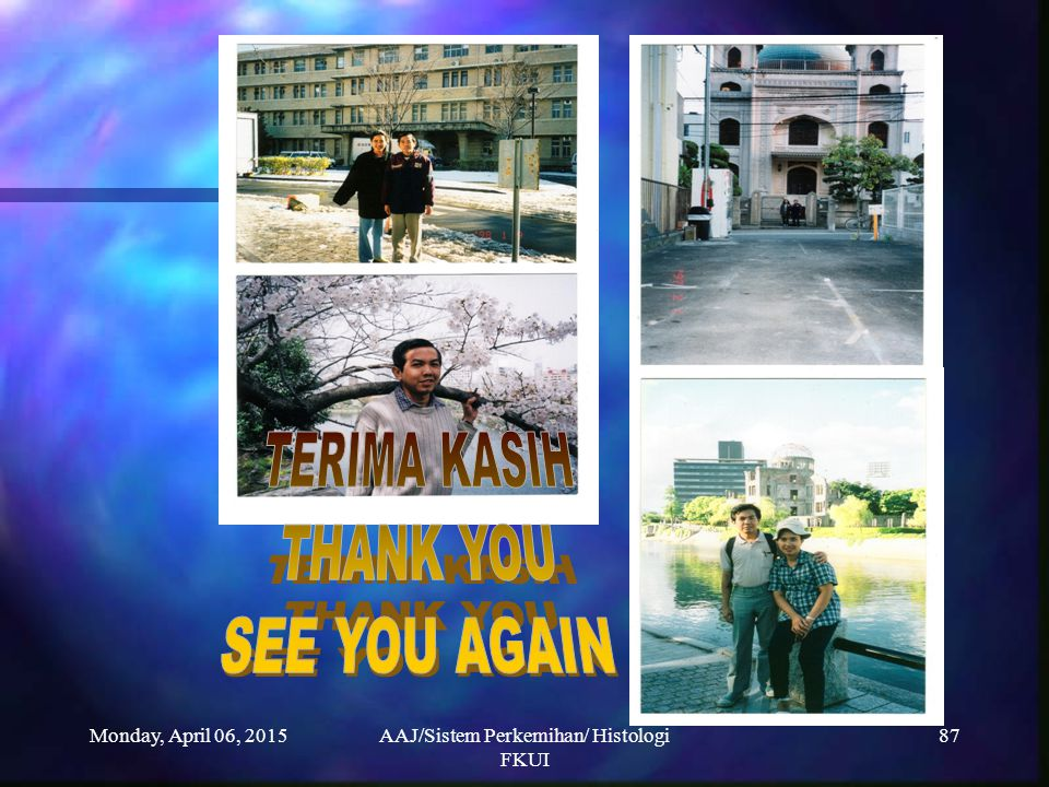 Monday, April 06, 2015AAJ/Sistem Perkemihan/ Histologi FKUI 87