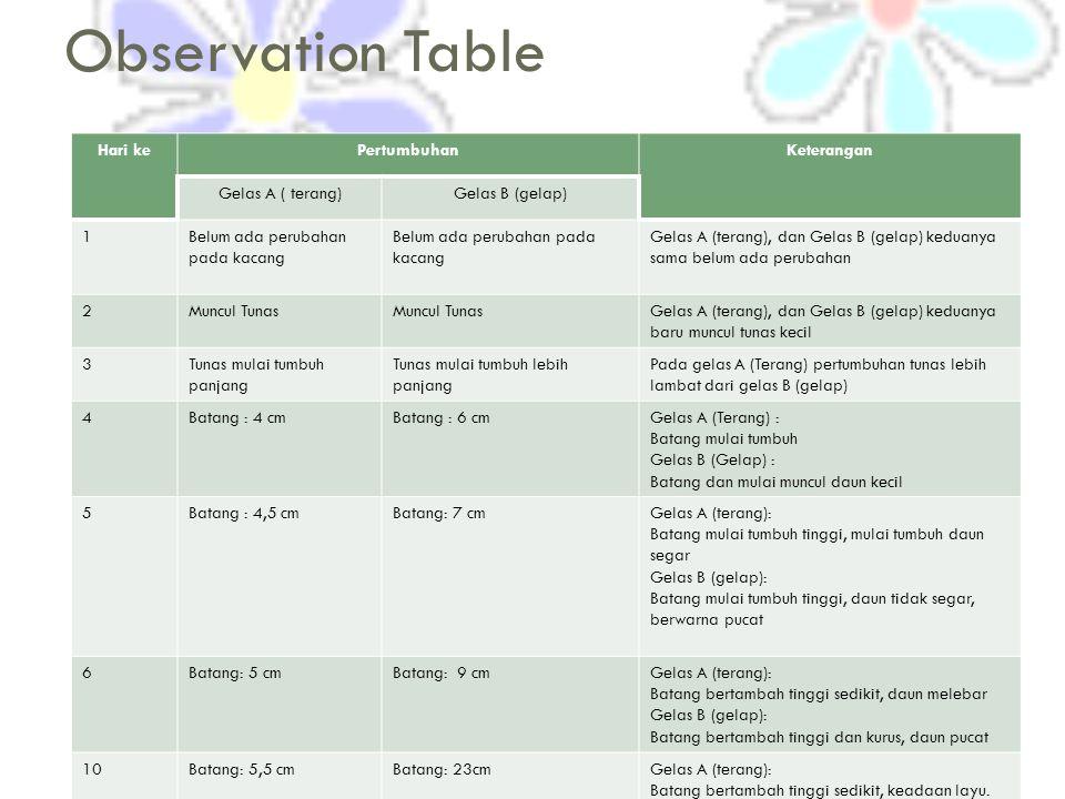 Observation Table Hari kePertumbuhanKeterangan Gelas A ( terang)Gelas B (gelap) 1Belum ada perubahan pada kacang Gelas A (terang), dan Gelas B (gelap) keduanya sama belum ada perubahan 2Muncul Tunas Gelas A (terang), dan Gelas B (gelap) keduanya baru muncul tunas kecil 3Tunas mulai tumbuh panjang Tunas mulai tumbuh lebih panjang Pada gelas A (Terang) pertumbuhan tunas lebih lambat dari gelas B (gelap) 4Batang : 4 cmBatang : 6 cmGelas A (Terang) : Batang mulai tumbuh Gelas B (Gelap) : Batang dan mulai muncul daun kecil 5Batang : 4,5 cmBatang: 7 cmGelas A (terang): Batang mulai tumbuh tinggi, mulai tumbuh daun segar Gelas B (gelap): Batang mulai tumbuh tinggi, daun tidak segar, berwarna pucat 6Batang: 5 cmBatang: 9 cmGelas A (terang): Batang bertambah tinggi sedikit, daun melebar Gelas B (gelap): Batang bertambah tinggi dan kurus, daun pucat 10Batang: 5,5 cmBatang: 23cmGelas A (terang): Batang bertambah tinggi sedikit, keadaan layu.