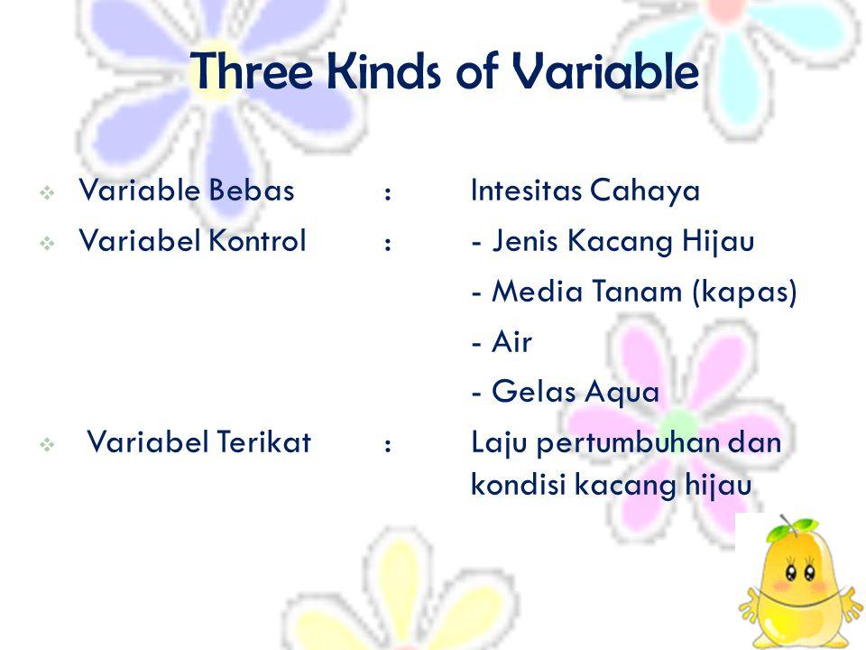 Three Kinds of Variable  V Variable Bebas:Intesitas Cahaya  Variabel Kontrol:- Jenis Kacang Hijau - Media Tanam (kapas) - Air - Gelas Aqua VVariabel Terikat:Laju pertumbuhan dan kondisi kacang hijau