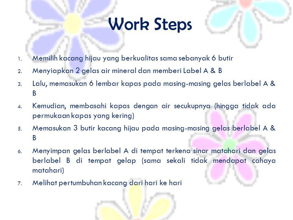 Work Steps 1. Memilih kacang hijau yang berkualitas sama sebanyak 6 butir 2. Menyiapkan 2 gelas air mineral dan memberi Label A & B 3. Lalu, memasukan