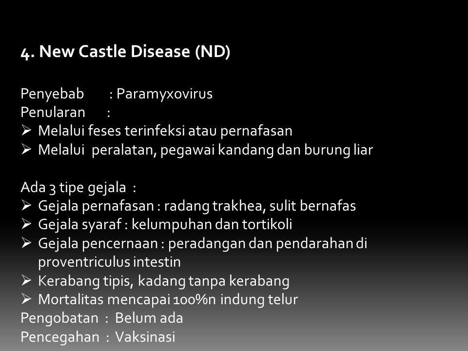 4. New Castle Disease (ND) Penyebab : Paramyxovirus Penularan :  Melalui feses terinfeksi atau pernafasan  Melalui peralatan, pegawai kandang dan bu