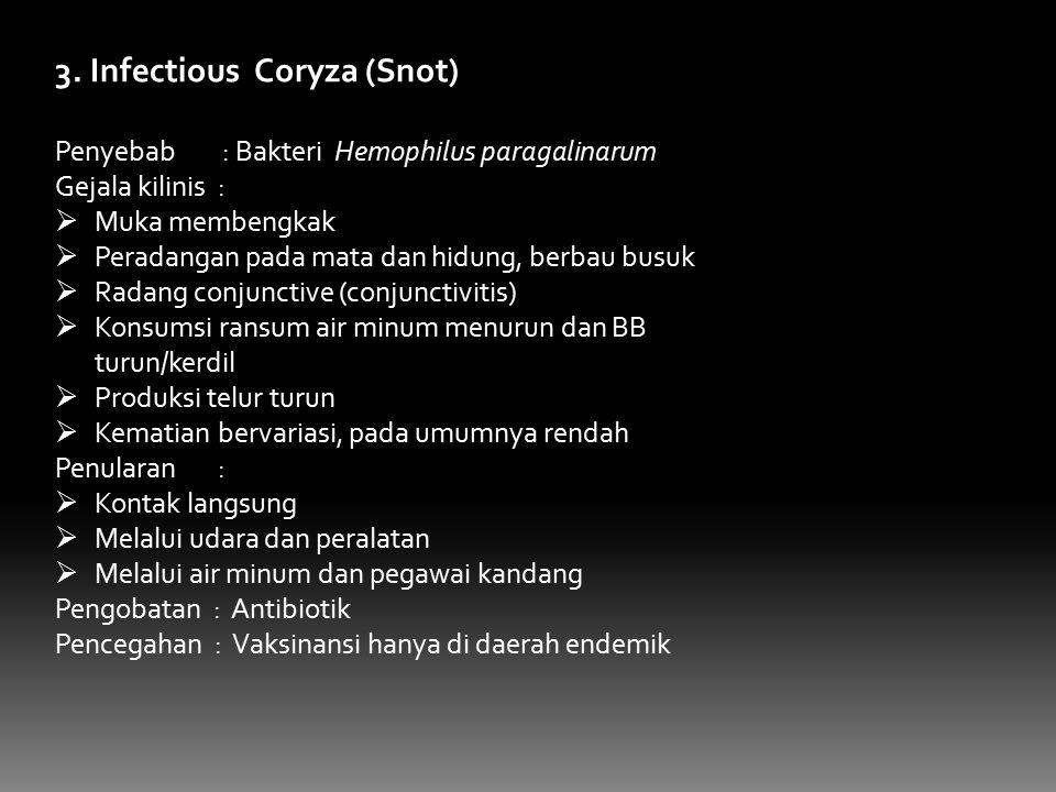 3. Infectious Coryza (Snot) Penyebab : Bakteri Hemophilus paragalinarum Gejala kilinis :  Muka membengkak  Peradangan pada mata dan hidung, berbau b