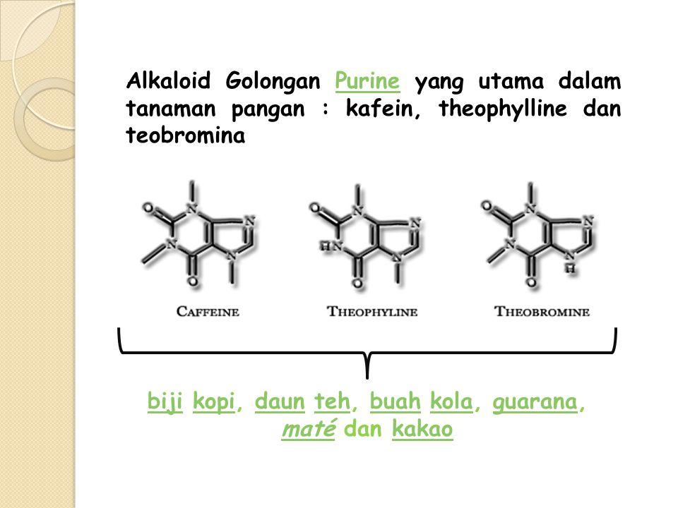 Alkaloid Golongan Purine yang utama dalam tanaman pangan : kafein, theophylline dan teobrominaPurine bijibiji kopi, daun teh, buah kola, guarana,kopid