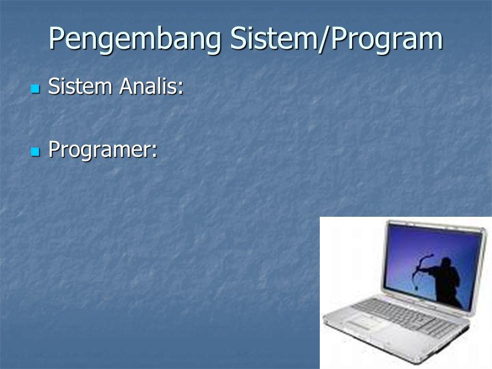 Pengembang Sistem/Program Sistem Analis: Sistem Analis: Programer: Programer: