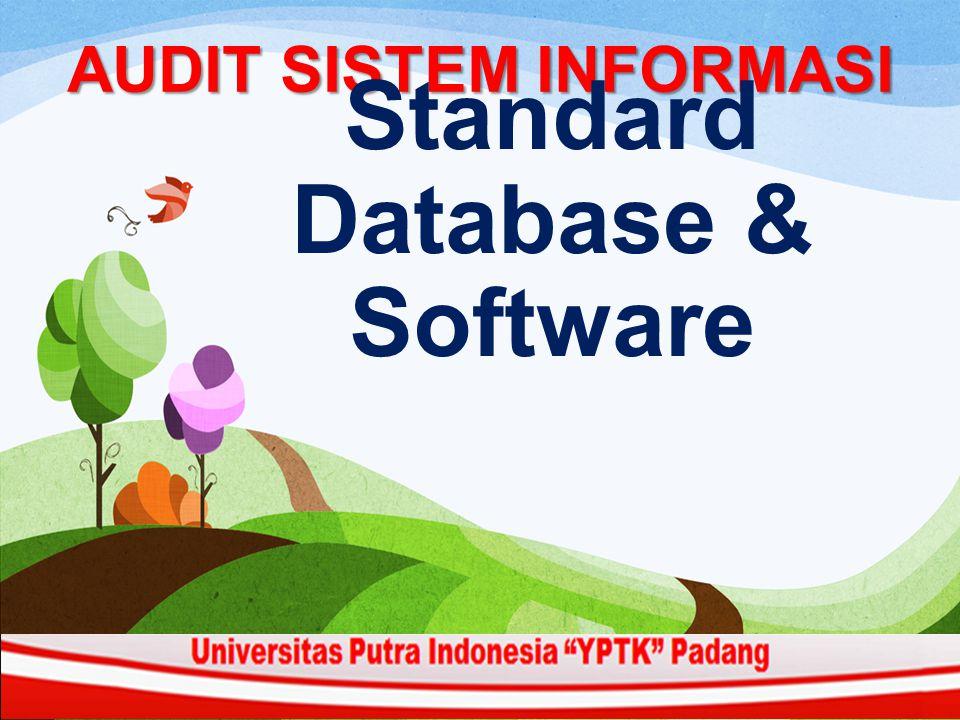AUDIT SISTEM INFORMASI Standard Database & Software