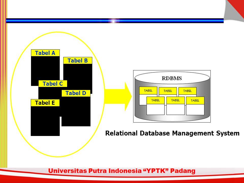 Tabel ATabel BTabel CTabel DTabel E Relational Database Management System