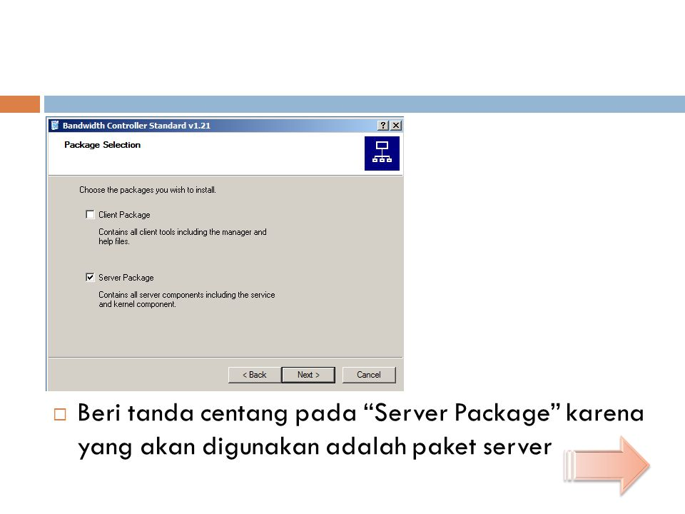 """ Beri tanda centang pada """"Server Package"""" karena yang akan digunakan adalah paket server"""