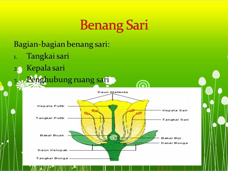 Bagian-bagian benang sari: 1. Tangkai sari 2. Kepala sari 3. Penghubung ruang sari