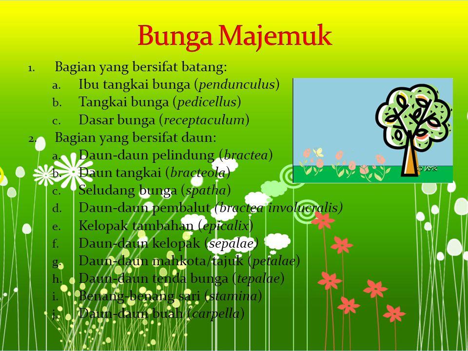 1. Bagian yang bersifat batang: a. Ibu tangkai bunga (pendunculus) b. Tangkai bunga (pedicellus) c. Dasar bunga (receptaculum) 2. Bagian yang bersifat