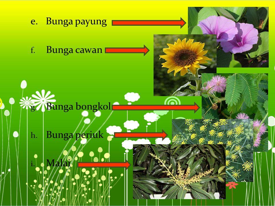 e. Bunga payung f. Bunga cawan g. Bunga bongkol h. Bunga periuk i. Malai