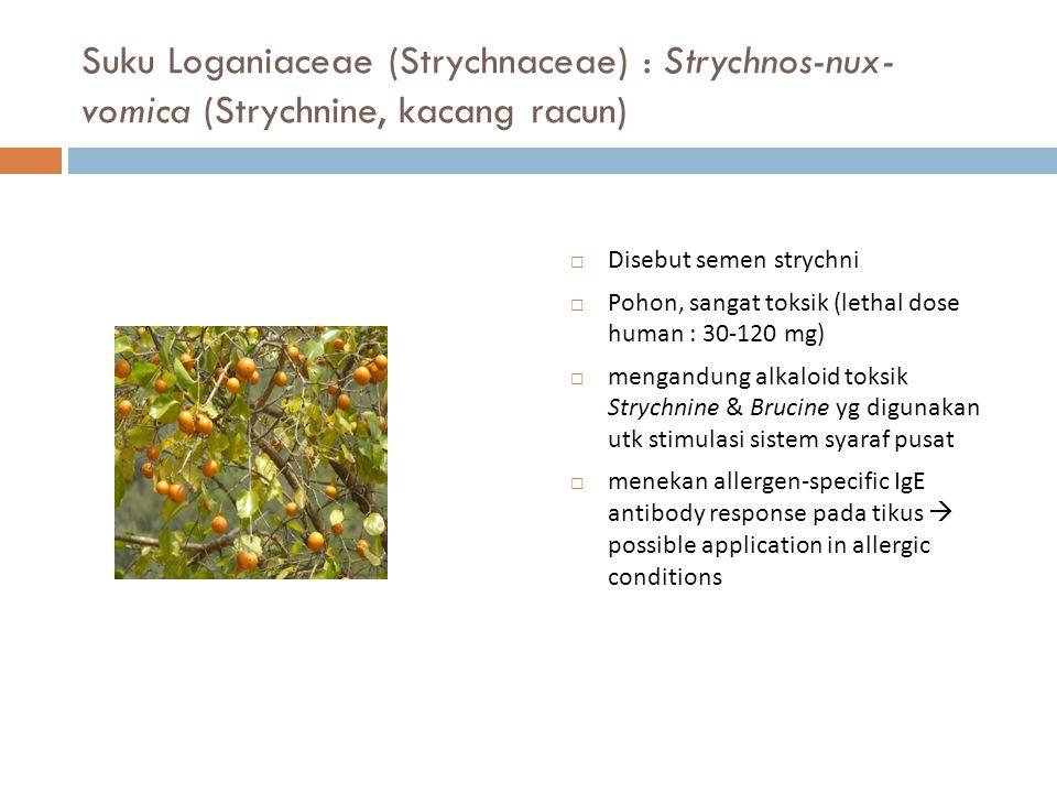 Suku Loganiaceae (Strychnaceae) : Strychnos-nux- vomica (Strychnine, kacang racun)  Disebut semen strychni  Pohon, sangat toksik (lethal dose human