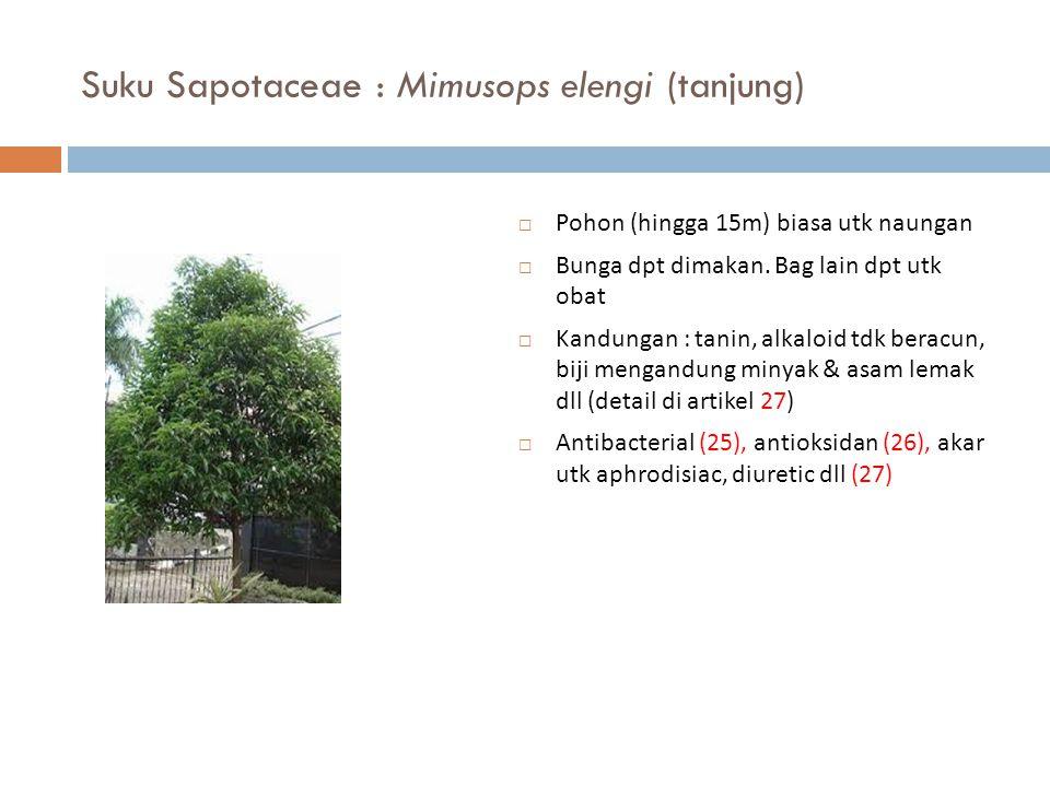 Suku Sapotaceae : Mimusops elengi (tanjung)  Pohon (hingga 15m) biasa utk naungan  Bunga dpt dimakan. Bag lain dpt utk obat  Kandungan : tanin, alk