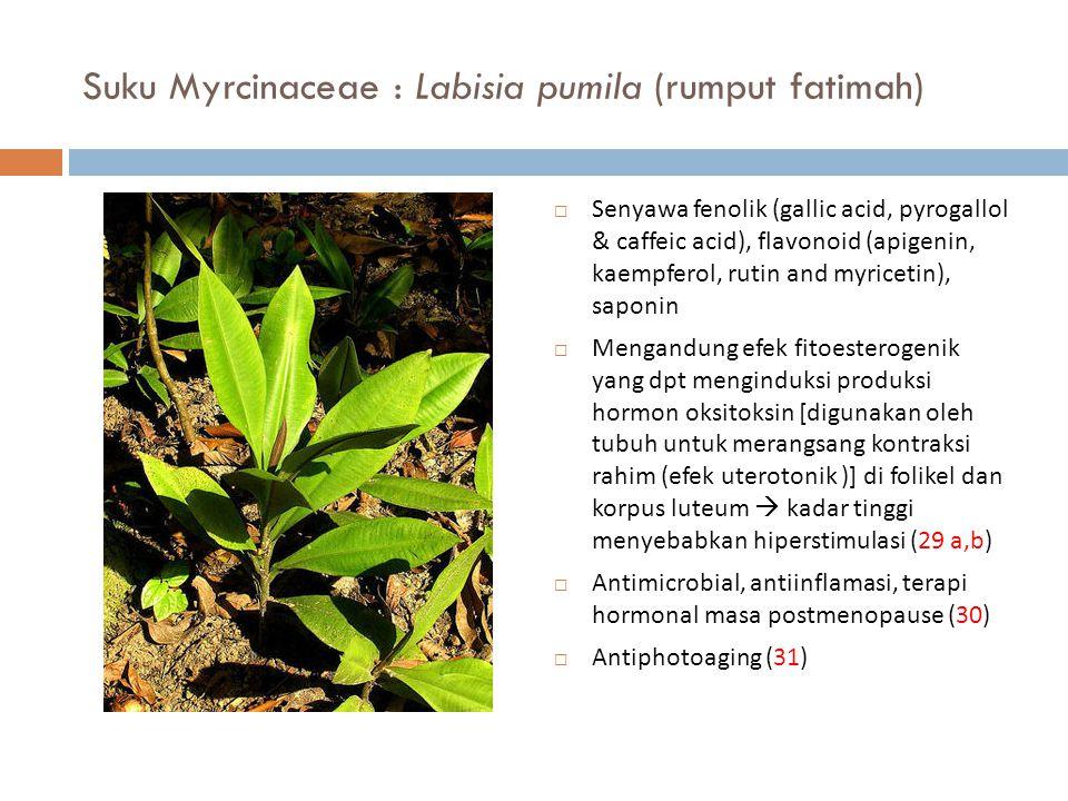 Suku Myrcinaceae : Labisia pumila (rumput fatimah)  Senyawa fenolik (gallic acid, pyrogallol & caffeic acid), flavonoid (apigenin, kaempferol, rutin